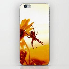Spiders Glow iPhone Skin