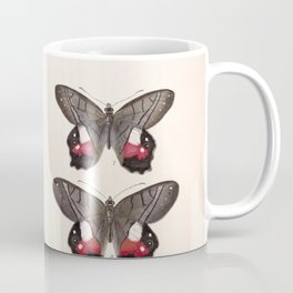 Moths And Butterfly Vintage Scientific Hand Drawn Insect Anatomy Biological Illustration Coffee Mug