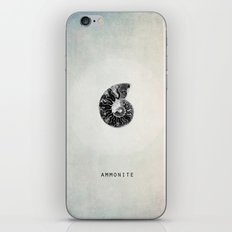 ammonite iPhone & iPod Skin