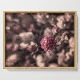 Sweetness mini carnations in pink antiqued look Serving Tray