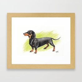 Dachshund (includes rescue donation!) Framed Art Print