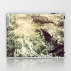 Sleeping under the River Laptop & iPad Skin