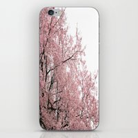 cherry blossoms iPhone & iPod Skins featuring cherry blossoms by 2sweet4words Designs