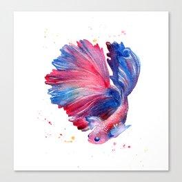Betta Splendens Fish Canvas Print