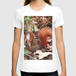 Do you have nuts for me? T-shirt