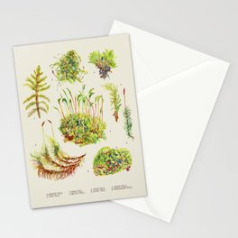 Moss - Botanical Neutral Stationery Cards