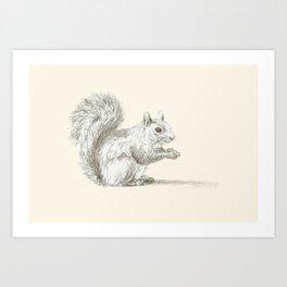 Squirrel at Rest Art Print
