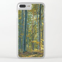 morton combs 04 Clear iPhone Case