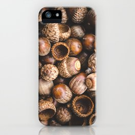 Squirrel Harvest iPhone Case
