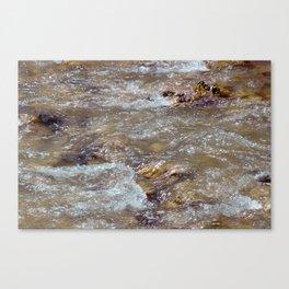 Run River Run I (Zion National Park, Utah) Canvas Print