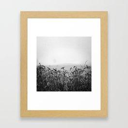 Harvest I Framed Art Print