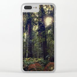 Sunrays in the Redwoods Clear iPhone Case
