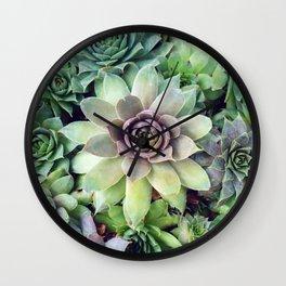 Succulent Garden II Wall Clock