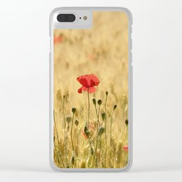 Dream poppies. Spring fields. Early morning Clear iPhone Case