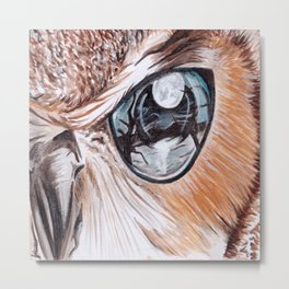Through Their Eyes - Owl Metal Print