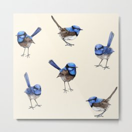Blue Wrens Scattered on Cream Metal Print