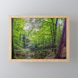 Forest Landscape Framed Mini Art Print