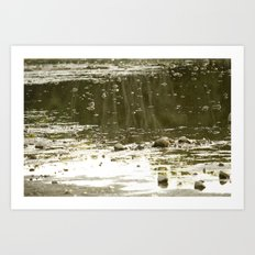 Cove by the lake Art Print