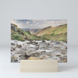 San Juan river Mini Art Print