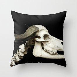 Cattle Skeleton Throw Pillow