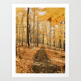 Autumn in America Art Print