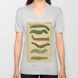 Naturalist Caterpillars Unisex V-Neck