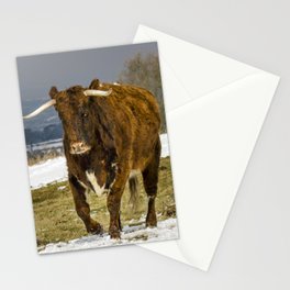 Bully The Bull On A Mission Stationery Cards