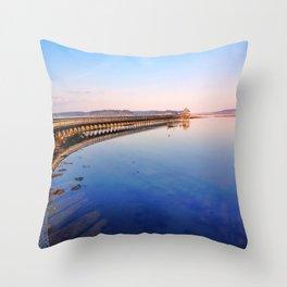 Nisqually National Wildlife Refuge Throw Pillow