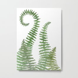 Flowing Fern Metal Print
