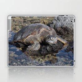 Turtle resting on the Rocks Laptop & iPad Skin