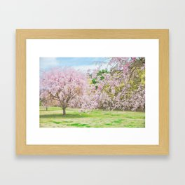cherry blossoms blooming in a fantastic garden Framed Art Print