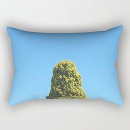 The Sparrows Apartment Rectangular Pillow