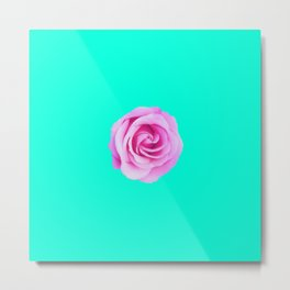 pink rose with green background Metal Print