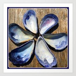 Blue and White Sea Shell Flower | Nadia Bonello Art Print