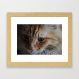 Deep Thought Framed Art Print