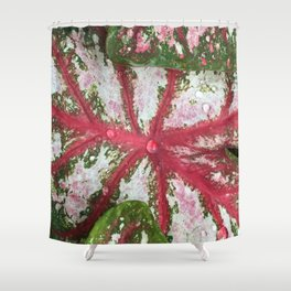 Heart of the Leaf Shower Curtain
