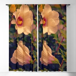 Rose of Cimmaron Blackout Curtain