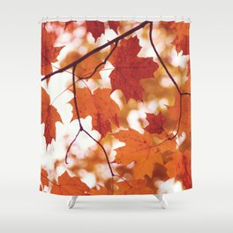Fluttering from the Autumn tree Shower Curtain