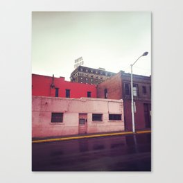 Pink Architecture Canvas Print
