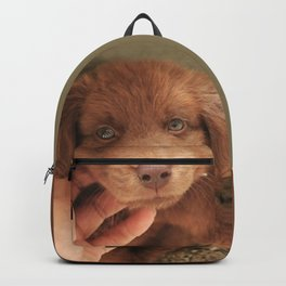 Potter's Cute Begining: A Gentle Look Backpack