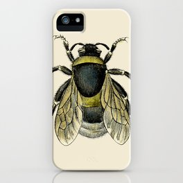 Vintage Bee Illustration iPhone Case