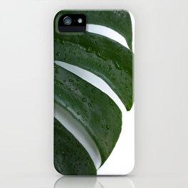 Monstera Leaf No. 1  iPhone Case