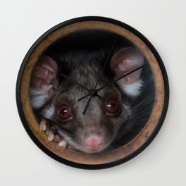 Possum Peekaboo Wall Clock