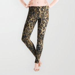 Leopard Cheetah Fur Wildlife Print Pattern Leggings