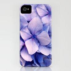 Hydrangea iPhone (4, 4s) Slim Case