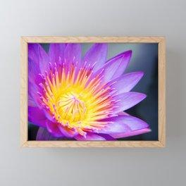 The World is a Garden Framed Mini Art Print