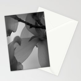 Majestic Heights Stationery Cards