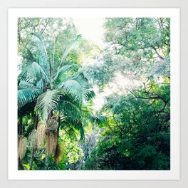 Lost in the jungle bright green tropical palm tree forest photography Art Print