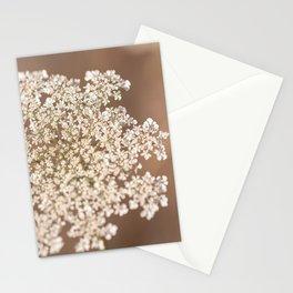 Hazy Lace Stationery Cards