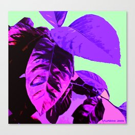 Purple Lemon Leaves Canvas Print
